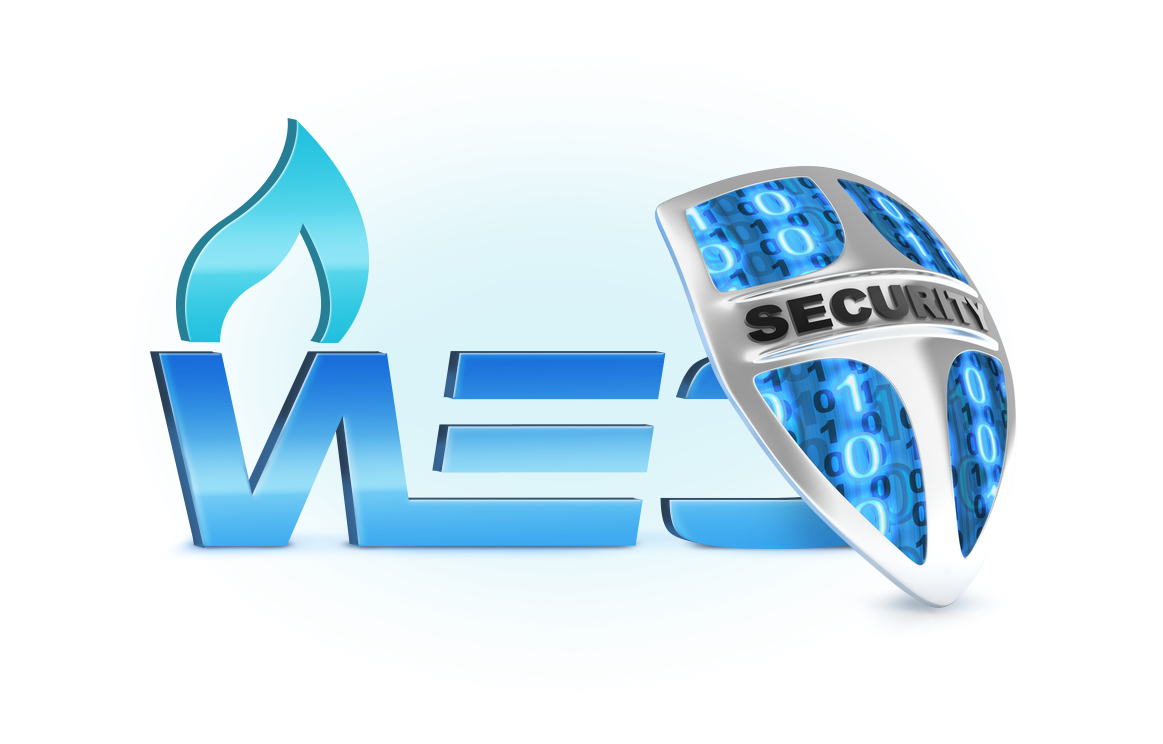 Защита WEC Security